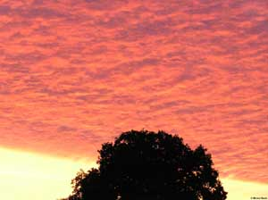 9ilu5ld-ciel_aurore.jpg