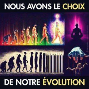Evolution homme