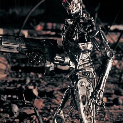 T2 endoskeleton