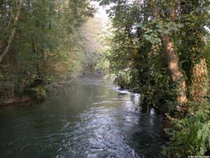 3dd4elu-riviere2.jpg