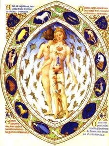 6eriui2-zodiac-homme.jpg